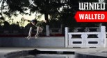 Wallted滑板桌面第八期