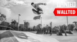 Wallted2013 5月滑板桌面