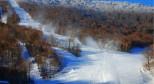 3月9日 科罗娜世界单板滑雪锦标赛开赛