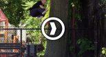 New Balance 最新滑板大片 Tricolor
