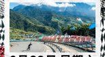 #滑板日历# 世界滑板日跟着 Vans 一齐来滑,抢回街道!