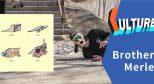 #滑板插画艺术家# 喜欢大便和蠢事的 Brother Merle